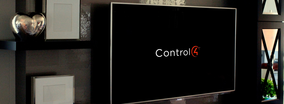 Control-Pana